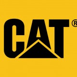 Caterpillar (NYSE:CAT) Trying to Spark a Flatlining Dow