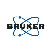 Bruker Corporation (NASDAQ:BRKR)
