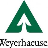Weyerhaeuser Company (NYSE:WY)