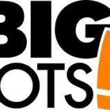 Earnings Analysis: Big Lots Inc. (NYSE:BIG)