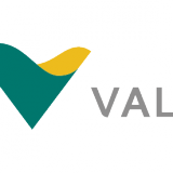 Vale SA (ADR) (NYSE:VALE)
