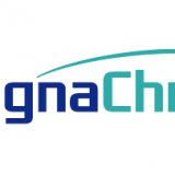 Magnachip Semiconductor Corp