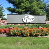 Pfizer Inc. (NYSE:PFE)