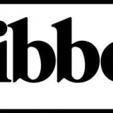 LIBBEY INC
