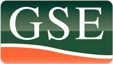 GSE Holding Inc (GSE)