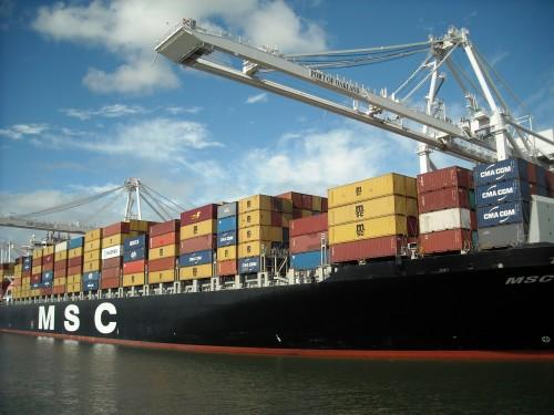 Container_Ship_MSC_Texas_(4423023837)