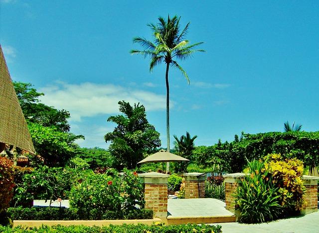 costa-rica-day