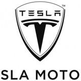 Tesla, is TSLA a go