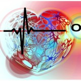heart-curve-healthy-pulse-frequency-heartbeat