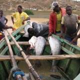 pescadores-99630