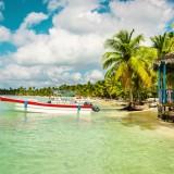 beach, sea, vacation, travel, palms, nature, landscape, scenic