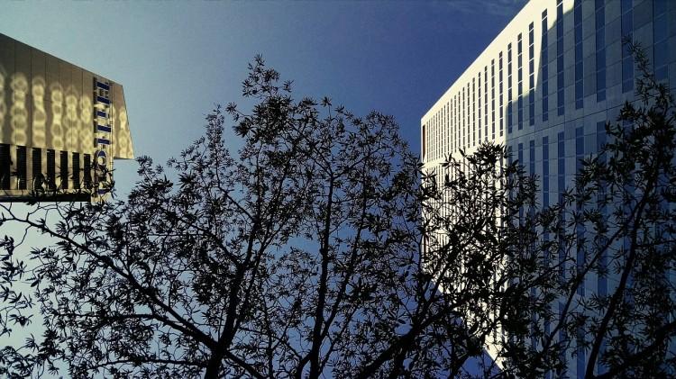 facades, buildings, Hilton