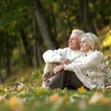 Ruslan Guzov/Shutterstock.com