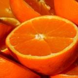 orange-15047_1280