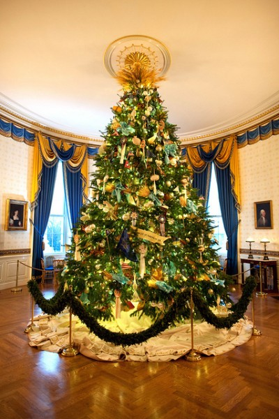 The Official White House Christmas Tree stands in the Blue Room of the White House, Dec. 4, 2010. (Official White House Photo by Chuck Kennedy) This official White House photograph is being made available only for publication by news organizations and/or for personal use printing by the subject(s) of the photograph. The photograph may not be manipulated in any way and may not be used in commercial or political materials, advertisements, emails, products, promotions that in any way suggests approval or endorsement of the President, the First Family, or the White House.