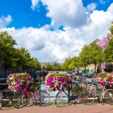 amsterdam, travel, street, dutch, outdoor, tree, tower, destination, historical, netherlands, holland, green, daylight, river, view, european, urban, landmark, summer, old,