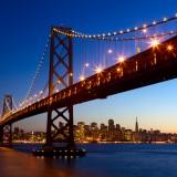 dibrova/Shutterstock.com