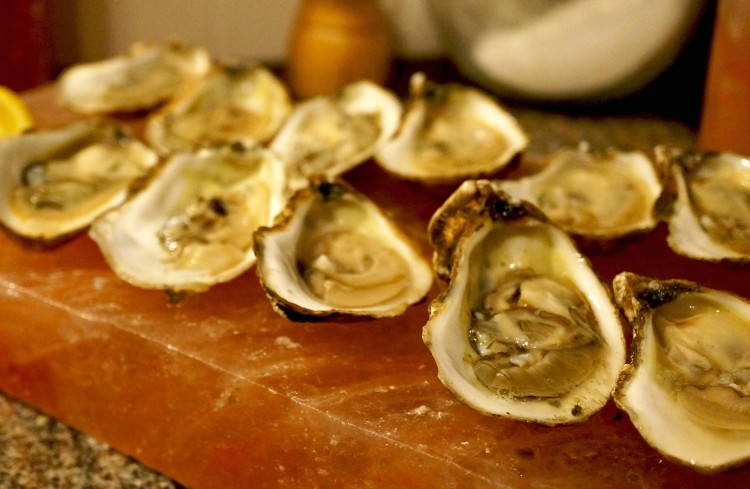 oysters-924001_1920