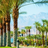 palm, springs, california, coachella, valley, indian, tree, destination, usa, travel, horizontal, urban, luxury, wells, united, elegant, states, roadway, place, city, mountain, nature, american, road, pavement
