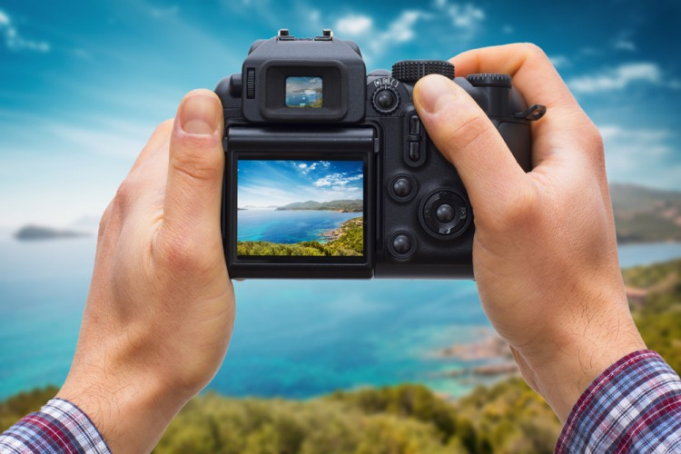 dslr, sardinia, photography, isolated, tree, island, photo, coast, display, tropical, white, travel, concept, sand, symbol, finger, summer, shoot, technology, paradise, lagoon, 6 Easiest DSLR Cameras to Use for Beginners