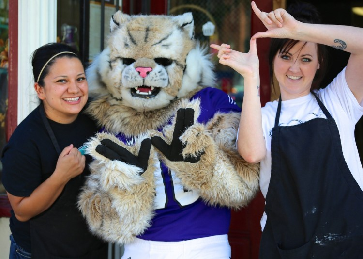 20 Most Popular High School Mascots