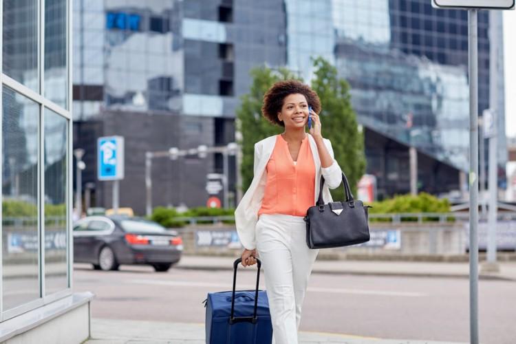 Handbags & Luggage, Handbag with Luggage