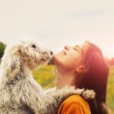 zakalinka/Shutterstock.com