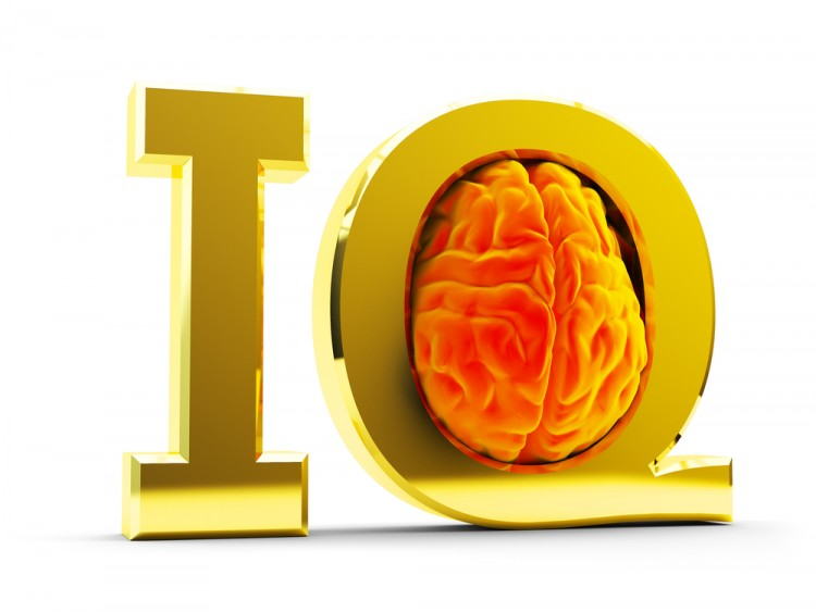 10 Professions with the Highest Average IQ per Employee