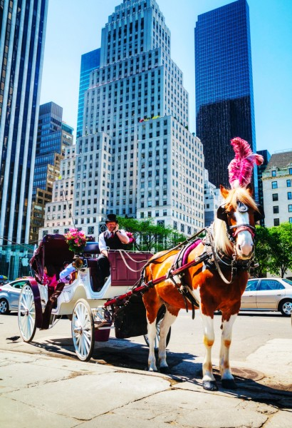 20 Best Things To Do In NYC In April